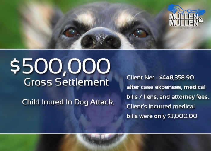 Dallas Dog Bite Attorneys