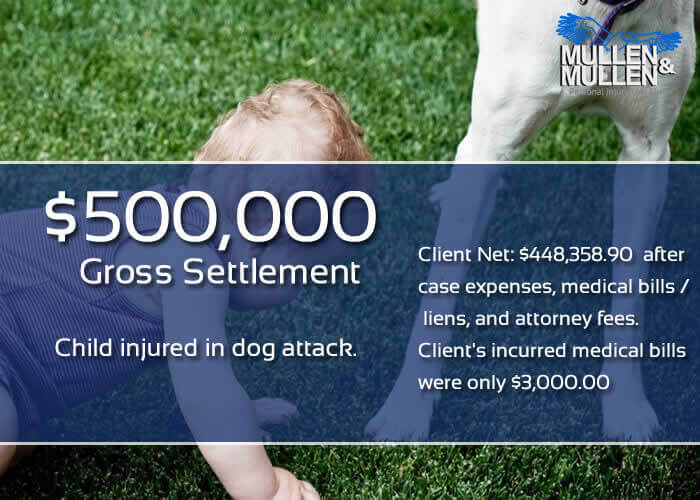 $500,000 Settlement for Child Attacked by Dog in Dallas
